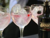 Gin zažívá ve Velké Británii obrodu, jeho výrobny nestačí uspokojovat poptávku