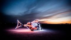 Marek Musil: Burning Man
