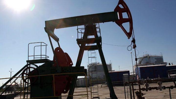 Ropy a plynu se prý loni našlo nejméně za minimálně 20 let