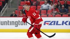 NHL 2018/19, Detroit Red Wings, příprava, Filip Zadina