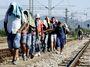 Zatuhlí Češi a přijímání uprchlíků. Pudy proti racionalitě