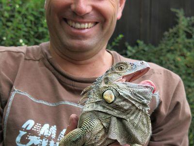 Ta ještěrka je nějak velká, pomyslel si houbař. V Brdech našel metrového leguána, šel od ostružin