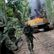 Obrazem: Oheň a vrtulníky jako z akčního filmu. V Amazonii zlikvidovali nelegální důl