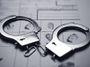Blog: Prý kopla policajta do zadku a hrozí jí čtyři roky vězení