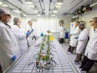 Obrazem: Přísně střežený kurz. Studenti prošli školením, jak pěstovat marihuanu