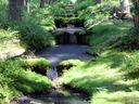 Obrazem: Lepší než přehrady. Nadšenci vyměnili kanceláře za rýče, aby pomohli na Šumavě udržet vodu