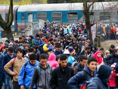 O azyl v Česku letos požádalo 235 cizinců, o 52 méně než loni. Nejčastěji o něj usilují Ukrajinci