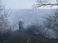 Lesní požár u Libčic nad Vltavou budou hasiči likvidovat až do sobotního odpoledne