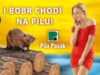Sex v reklamě? Fotíme ženy přímo z firmy, vtipné slogany se lidem líbí, říká šéf Pily Pasák