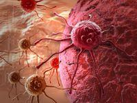 Rakovina není choroba moderní doby, lidé jí trpěli už před miliony let