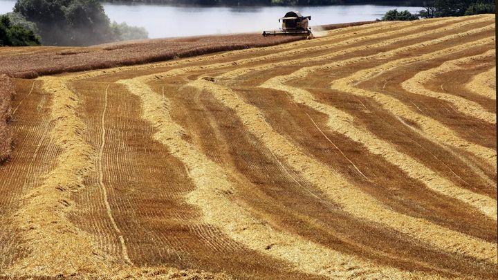 Levná půda v Česku láká investory. Roční výnos až 10 procent