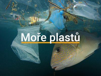 Grafika: Tuny PET lahví, mrtvé velryby, zničené oceány. Takto jsme vytvořili obří moře plastů