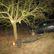 Devatenáctiletý mladík zemřel při nehodě na Bruntálsku, naboural do stromu