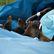 Islamisté zaútočili na hostel v Keni. Nejméně 12 lidí při útoku zemřelo