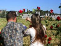 Foto: Květiny zůstaly na plotě. Tam, kde umírali lidé, dál umírají prasata. Zbývají čtyři měsíce