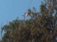 Živě: Před sestřelením Su-24 padaly na Turkmeny ruské bomby