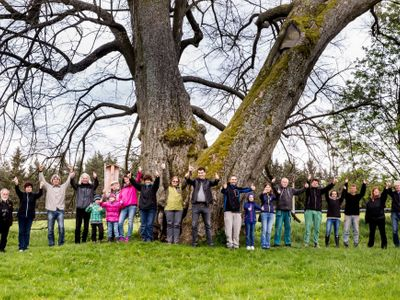 Fotky: Tohle je Strom roku. Pod 800 let starou lípou odpočívali Žižka i Komenský