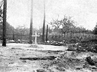 Obrazem: Český Malín - vraždění, o němž se po celá desetiletí mlčelo