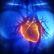 Vědci budou umět vytvořit počítačový model srdce každého pacienta. Projekt pomáhají rozběhnout Češi