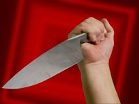 Patnáctiletá dívka na Chebsku pobodala kamarádku. Ta ji uprosila, aby jí nepodřízla hrdlo