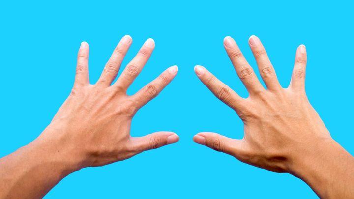 Sexualita žen se dá poznat podle ukazováčku a prsteníčku levé ruky, tvrdí studie