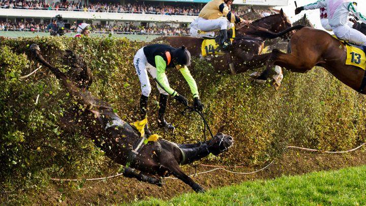I po úpravách Taxis nezvládli dva koně. Stejný skok, pádům nezabráníme, tvrdí jezdci; Zdroj foto: ČTK