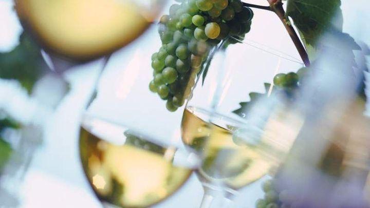 Víno Mikulov prodávalo víno se syntetickým přídavkem